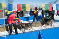 Apostle Islands Sled Dog Race 13-2_0429