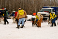 Apostle Islands Sled Dog Race 11-2-_2449