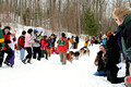 Apostle Islands Sled Dog Race 11-2-_2473