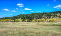 Road to Custer State Park 17-10-01119