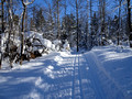 ABR Ski Trails 18-1P-_0104a