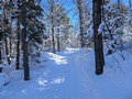 ABR Ski Trails 18-1P-_0107a
