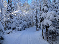 ABR Ski Trails 18-1P-_0131a