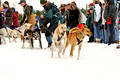 Apostle Islands Sled Dog Race 11-2-_2485