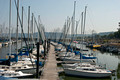 Lake City Docks 13-9-_9257