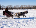 Northwoods Harness Club Sleigh and Cutter Rally Ashland 17-1-2276