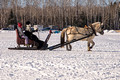 Northwoods Harness Club Sleigh and Cutter Rally Ashland  17-1-2312