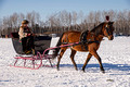 Northwoods Harness Club Sleigh and Cutter Rally Ashland  17-1-2319