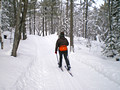 Keweenaw Mountain Lodge Ski Trails 11-1-_2150a