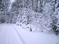 ABR Ski Trails 14-12-_0153