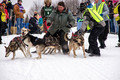 Apostle Islands Sled Dog Race 2015