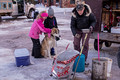 Copper Dog 150 Sled Dog Race Stage 1 Start 16-3-_4119